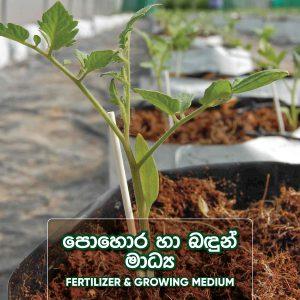 Fertilizer and Growing Medium