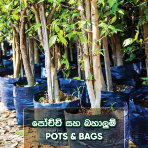 Bags and Pots